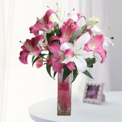 Exotic Flowers Online