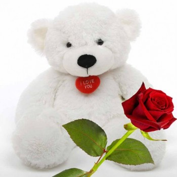 1 Red Roses with 1 Teddy Bear (18inches)