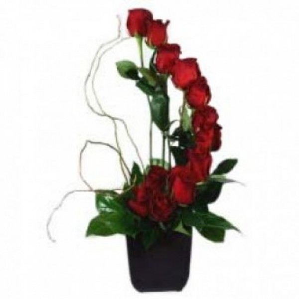 Moon shape floral arrangement of 15 Red Roses in a Vase