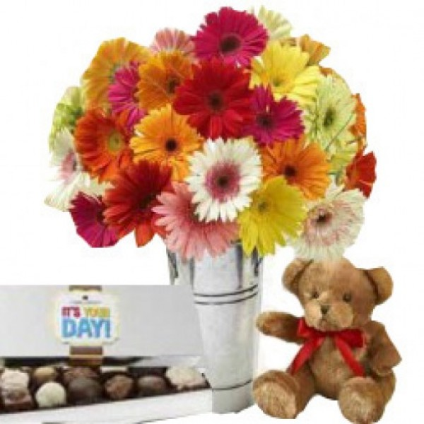 20 Assorted Gerberas with 10 Inches Teddy and Cadbury Rum Raising Chocolate