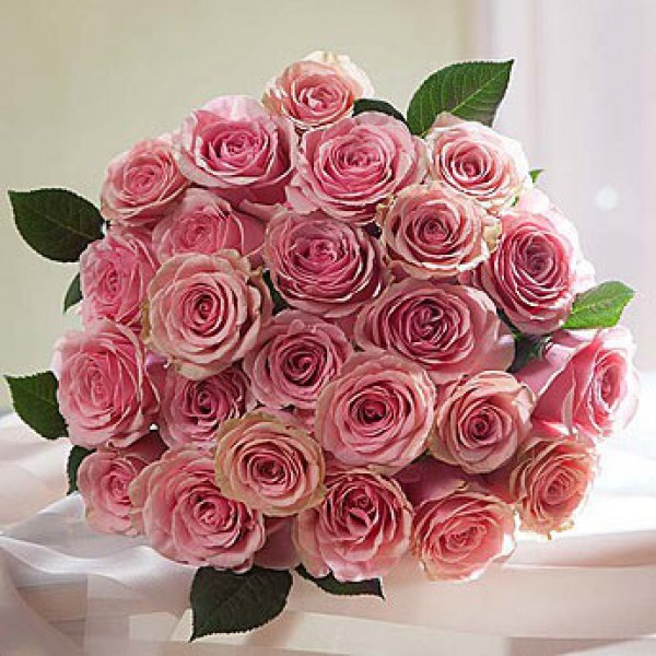 Pink Roses for Mothers Day