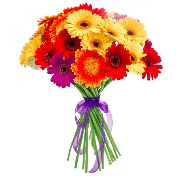 20 Mixed Gerberas (10 yellow,5 orange, 5 red ) Bunch