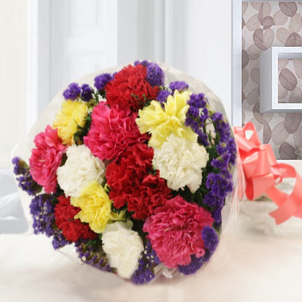 12 Colourful Carnations Bunch