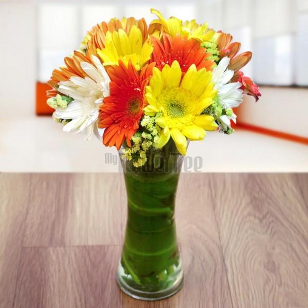 12 Assorted Gerberas in a Vase