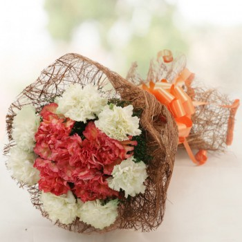 12 Carnations (Orange and White) Bunch
