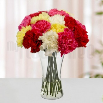 12 Colourful Carnations (Yellow,Red,Pink and White) in a Glass Vase