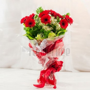 10 Red Gerberas in Cellophane packing