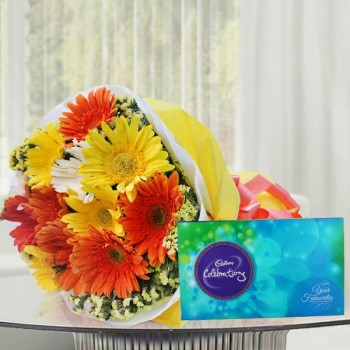 10 Colorful Gerberas in Yellow and White paper packing, Orange Bow with Cadbury Celebration(131.3gm)