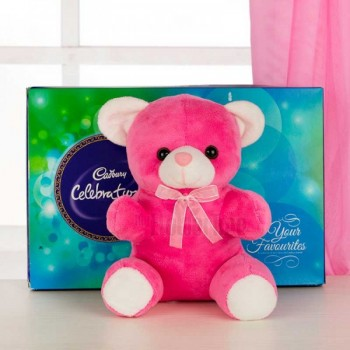 One Cadbury Celebrations Pack (141.1 Gms) and 6 Inches Teddy