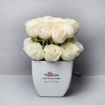 24 White Roses Arrangement in Plastic Pot