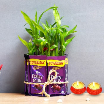 One 2 Layer Lucky Bamboo with Glass Vase covered with 7 DairyMilk Chocolates (13.2 gm) and Set of 2 Diya