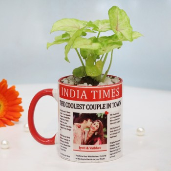 Syngonium Plant in Personalised Newspaper Theme Red Handle Mug for Anniversary
