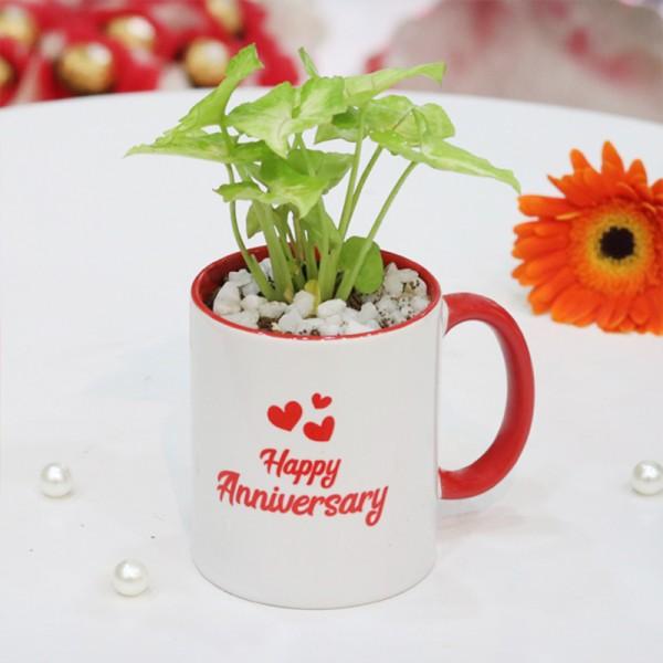 Anniversary Mug Combo