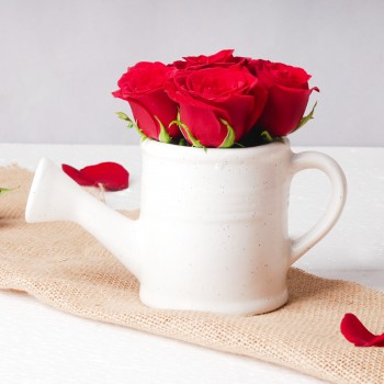 6 Red Roses arranged in Kettle Ceramic Pot