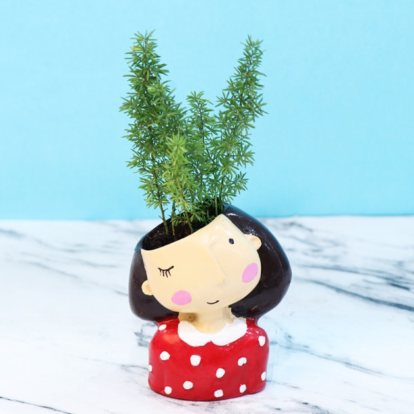 Fern Plant is Designer Pot