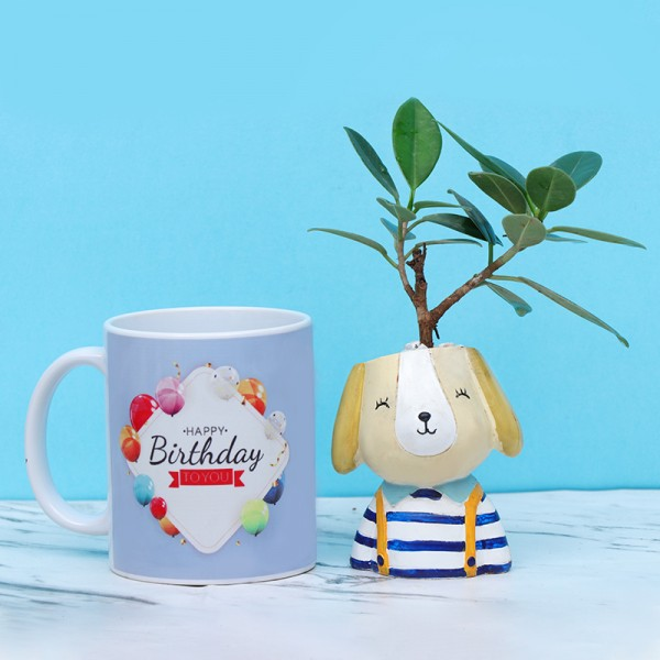 Fiscus Tree Plant with Birthday Mug