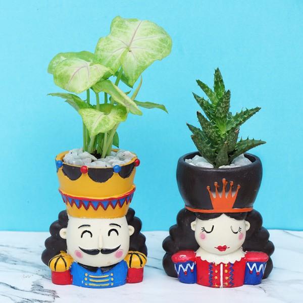 King Queen Plant Pots Combo