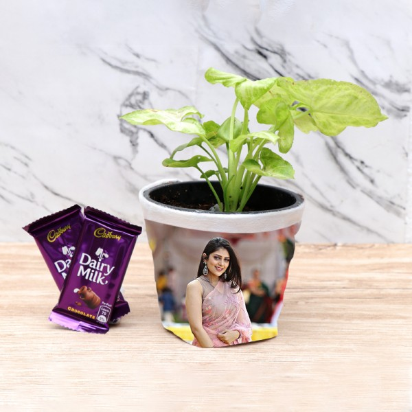 Syngonium Plant with Personalised Pot
