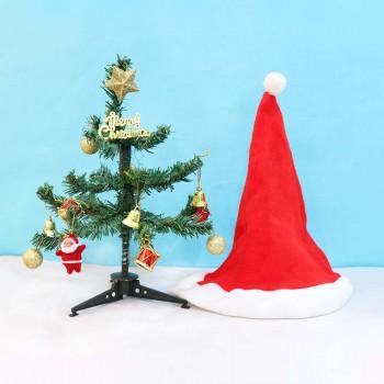 Christmas Tree and Santa Cap