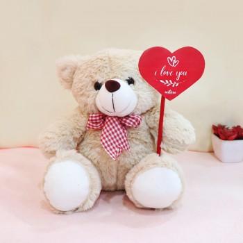 Valentines Day Teddy