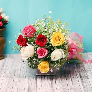 8 Mixed Roses