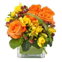 Delightful Flowers