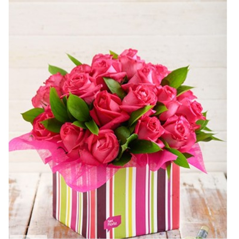 Pink Roses in Striped Box