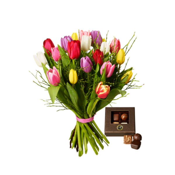 Tulips with Chocolate