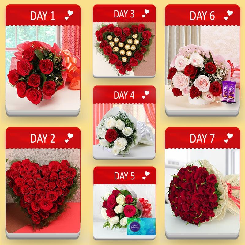 Valentine Plan