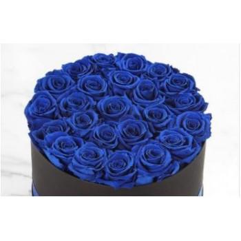 Blue Roses Hot Box