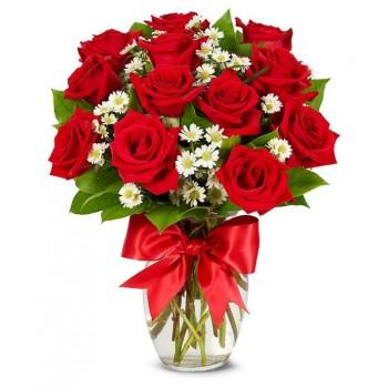 1 Dozen Roses Red
