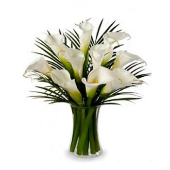 Stunning Calla Lilies