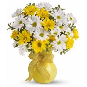 Classic Yellow White Daisies