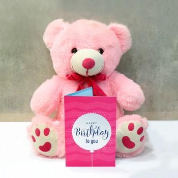 Baby Bear Birthday Combo