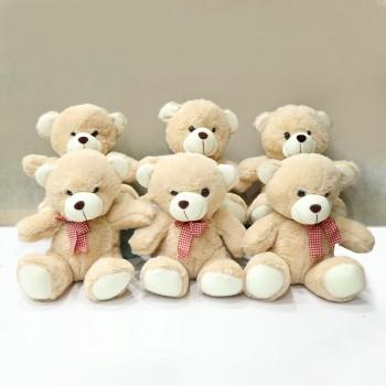 Brown Teddy Fondness