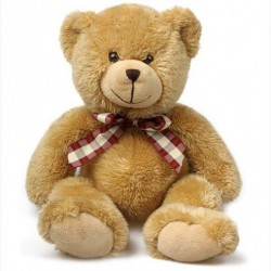 Teddy 18 Inches Tall