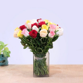 24 Assorted Roses in Paper Packing