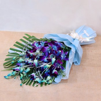 6 Blue Orchids wrapped in Cellophane Packing