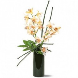 Artistic Orchids