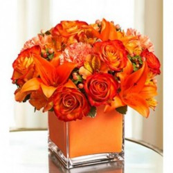Designer Flowers & Bouquet Delivery Online
