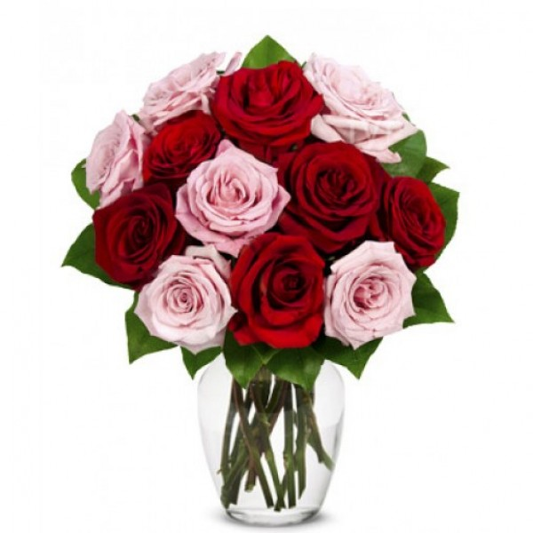 One Dozen Red n Pink Roses