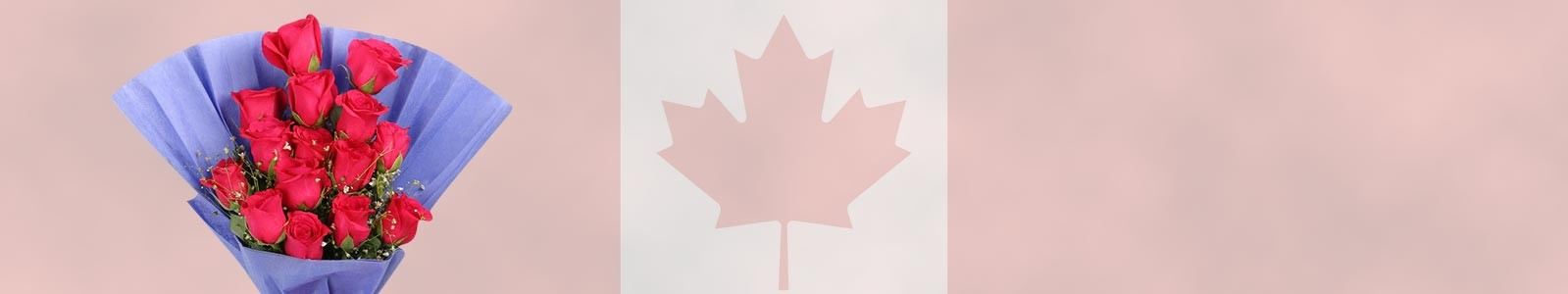 Send Flowers to Canada Online