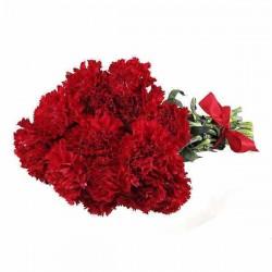 Send Carnations Online